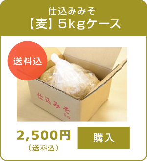 仕込みみそ【麦】5kgケース 送料込 2,500円
