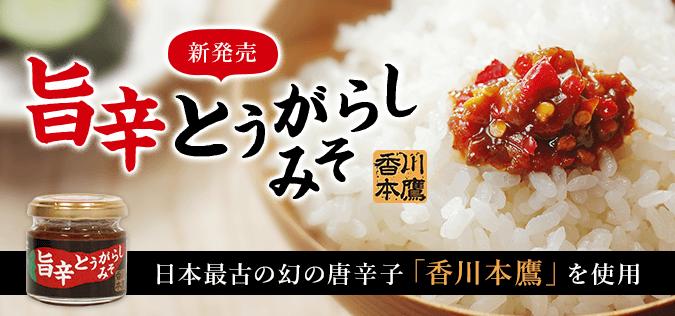 旨辛とうがらしみそ 日本最古の幻の唐辛子「香川本鷹」を使用